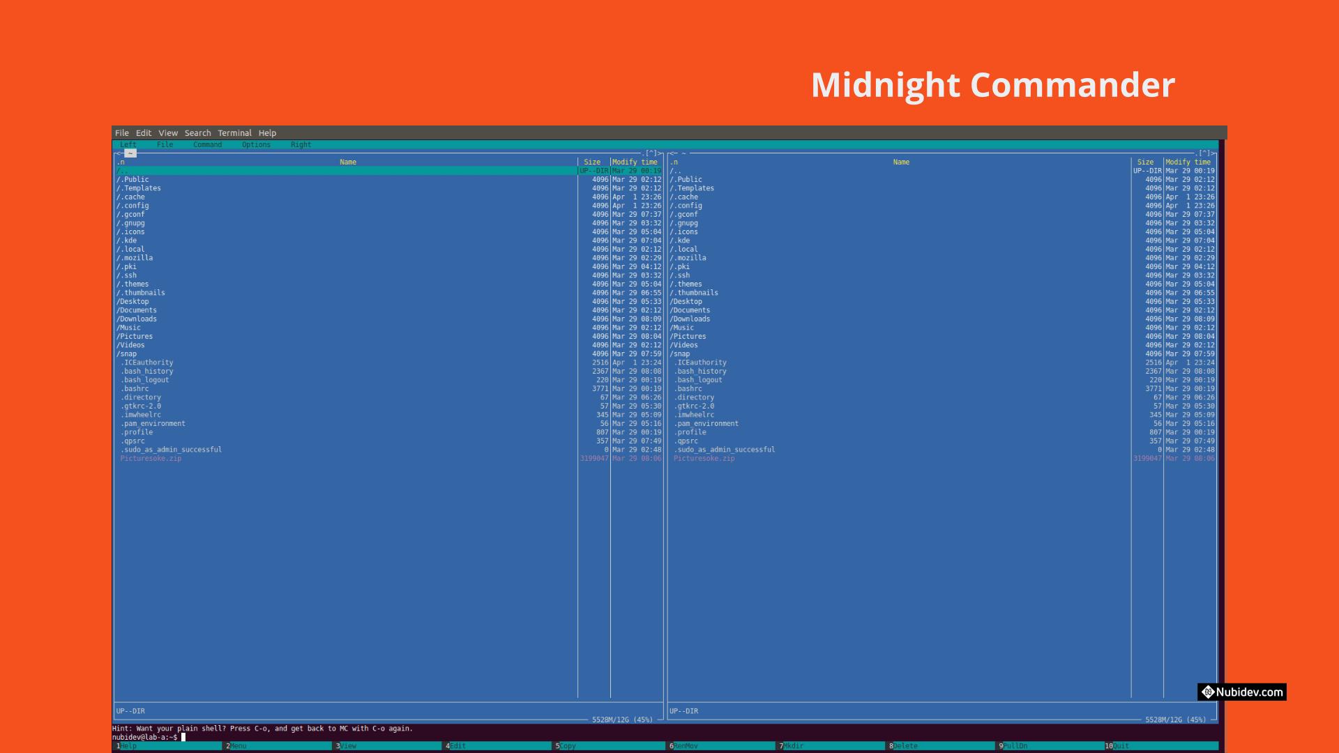 Midnight Commander